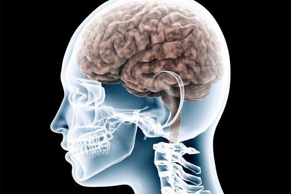 Ser bilingüe te hace ser más inteligente, aprender otro idioma desarrolla mayores niveles de control cognitivo